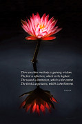 Mike Savad - Inspirational - Reflection - Confucius