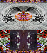 Morphed Prints - Inspiring Trust Spider - Spirit 2013 Print by James Warren