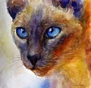 Animal Portrait Posters Framed Prints - Intense Siamese Cat painting print 2 Framed Print by Svetlana Novikova