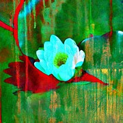 Barbara S Nickerson - Intense Water Lily