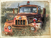 Tracy Munson Metal Prints - International Harvester Metal Print by Tracy Munson