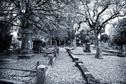 Photography Into Art Photo Prints - Into Magnolia Cemetery Print by John Rizzuto