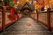 New England. Pyrography Prints - Into the autumn Print by Lourry Legarde