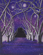 Color Pencil Drawings - Into the Dark by Elizabeth Dobbs