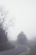 Country Lanes Prints - Into the Fog Print by Kay Pickens