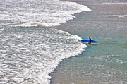 Into The Surf Print by Susan Wiedmann