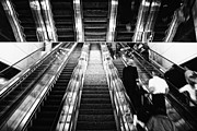 Escalator Metal Prints - Into the Unknown Metal Print by Lauri Novak
