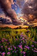 Phil Koch - Into the West