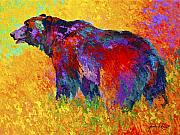 Bear Painting Prints - Into The Wind Print by Marion Rose