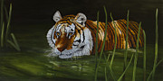 Johanna Lerwick - Intrigued - Tiger