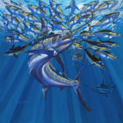 Yellowfin Tunas Posters - Intruder Poster by Carey Chen
