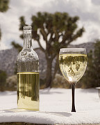 Chardonnay Posters - Inverted Image Joshua Trees in White Wine Glass and Bottle - Chardonnay in Desert Snow  - California Poster by David Rigg