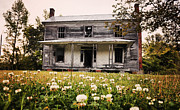 Abandoned Houses Photo Metal Prints - Invited In Metal Print by Emily Stauring