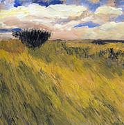 Randy Sprout - Iowa Prarie Grass