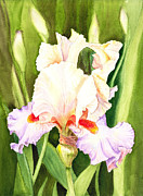 Birthday Cards Painting Originals - Iris Flower Dancing Petals by Irina Sztukowski
