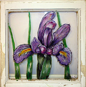 Purple Glass Art - Iris on Barn Window by Wendy Boomhower