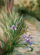 Johanna Axelrod Prints - Iris Over the Inlet Print by Johanna Axelrod