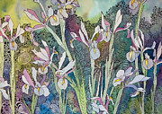 Terry Holliday - Irises and Doodles