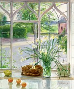 Ledge Posters - Irises and Sleeping Cat Poster by Timothy Easton