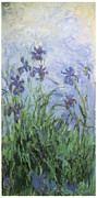 Impressionism Framed Prints - Irises Framed Print by Claude Monet
