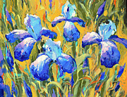 Dmitry Spiros - Irises