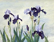 Print Of Irises Prints - Irises Purple Flowers Painting Floral K. Joann Russell                                           Print by K Joann Russell