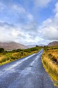 Irish Countryside Of Connemara Print by Mark E Tisdale