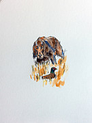 Sporting Art Originals - Irish Setter by Paul Francev