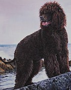 Dog Art Paintings - Irish Water Spaniel by Lee Ann Shepard