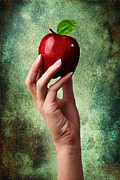 Temptation Posters - Irresistible Red Apple Poster by Cindy Singleton