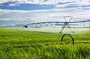 Automatic Posters - Irrigation on Saskatchewan farm Poster by Elena Elisseeva