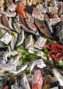 Italian Meal Prints - Ischia Fish Market Print by Jean Hall