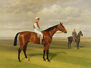 Horse Race Framed Prints - Isinglass Winner of the 1893 Derby Framed Print by Emil Adam
