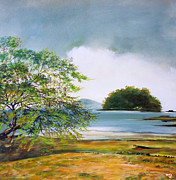 Sanchez Paintings - Isla Venao by Ricardo Sanchez Beitia