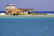 Aruba Prints - Island Fisherman Hut of Aruba Print by David Letts