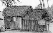 Shack Drawings - Island House 1 by Lew Davis