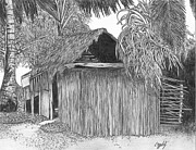 Shack Drawings - Island House 14 by Lew Davis