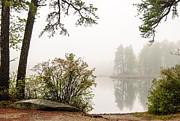Marie Fortin - Island in Fog