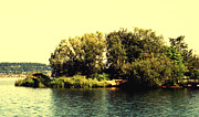 Expressionist Photos - Island On A Seattle Lake by John Krakora