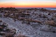 Sand Dunes Prints - Island Sunrise  Print by JC Findley