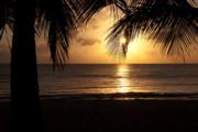 Island Sunset Print by Charles Dobbs