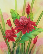 Torch Paintings - Island Torch Ginger by Ann Hurst