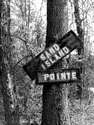 Alabama Pyrography Posters - Islands End Poster by KayLee Byrtus