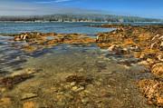 Adam Jewell - Isle au Haut Beach