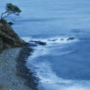 Isolated Tree On A Cliff Overlooking A Print by Ken Welsh