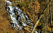 Matthew Winn Posters - Issaqueena Falls in Late Autumn Poster by Matthew Winn