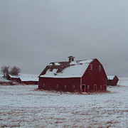 Red Barn In Winter Photos - It Stood Forever by Abigail Ellison