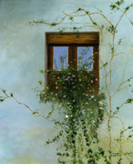 Original Oil Paintings - Italian Flower window by Cecilia  Brendel