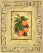 Plaque Painting Posters - Italian Fruit Apricots Poster by Marilyn Dunlap