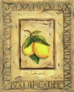 Lemons Metal Prints - Italian Fruit Lemons Metal Print by Marilyn Dunlap